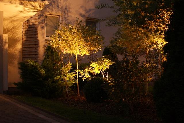 Oświetlenie drzewa, KOS3R